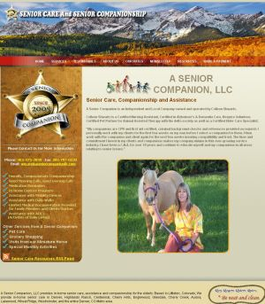 website-design-senior.jpg